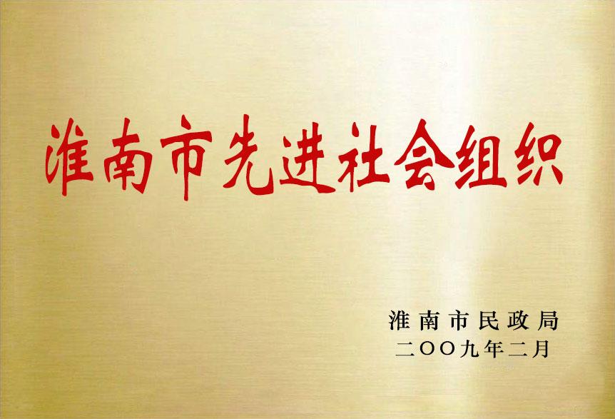 淮南市先进社会组织
