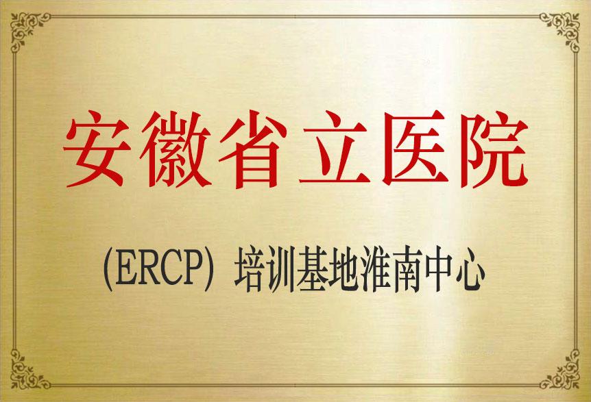 安徽省立医院(ERCP)培训基地淮南中心